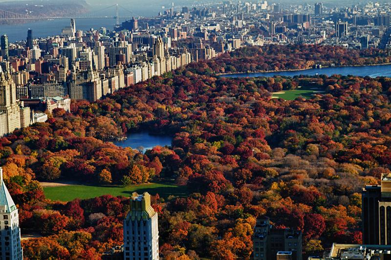 Central Park: el gran pulmón neoyorkino