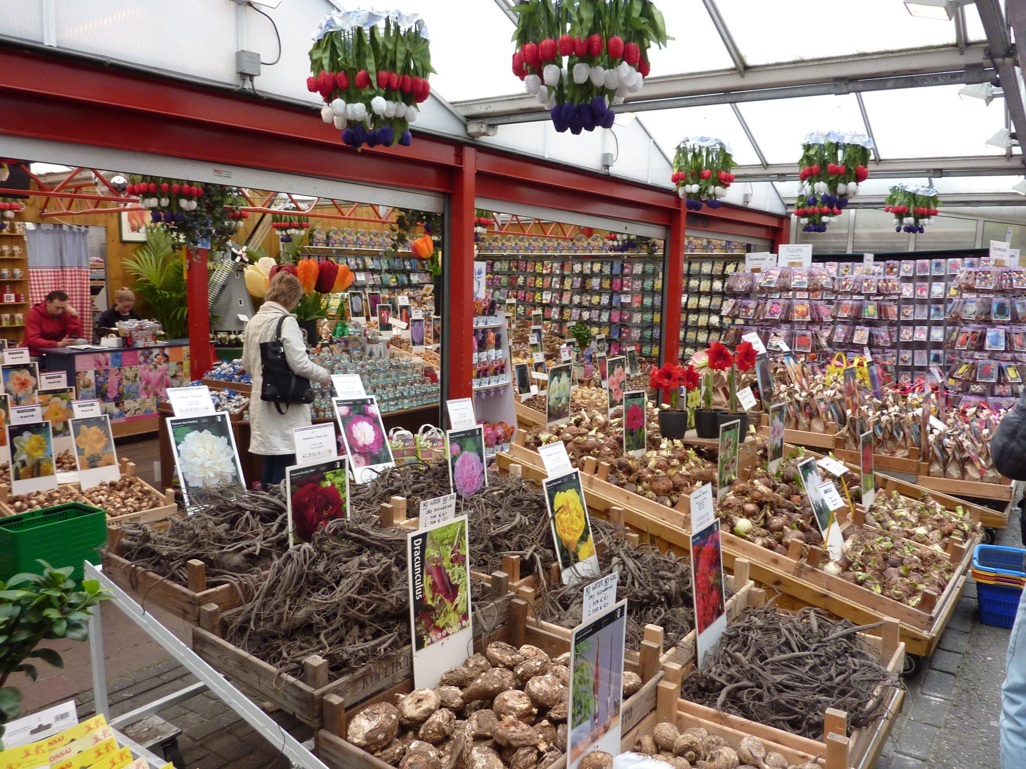 Los 5 mejores mercados de Ámsterdam