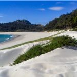 Visitar las Islas Cíes, todo lo que necesitas saber