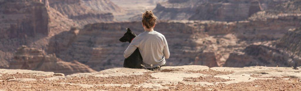 Consejos para viajar con tu mascota